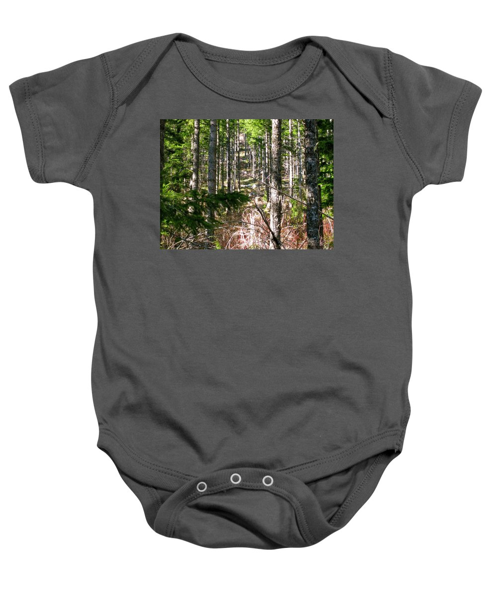 Trees Baby Onesie featuring the photograph Depth Of Trees by Linda Hutchins