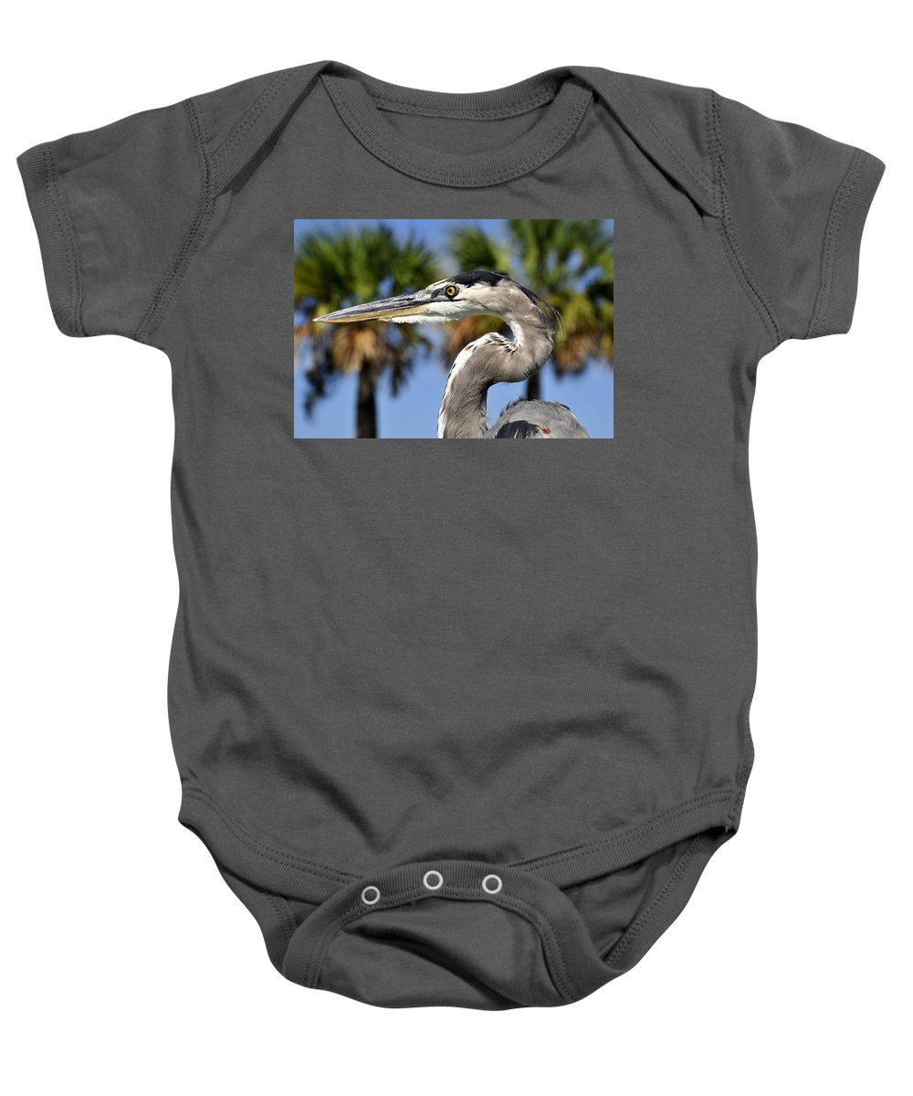 Great Blue Heron Baby Onesie featuring the photograph Determined by David Lee Thompson