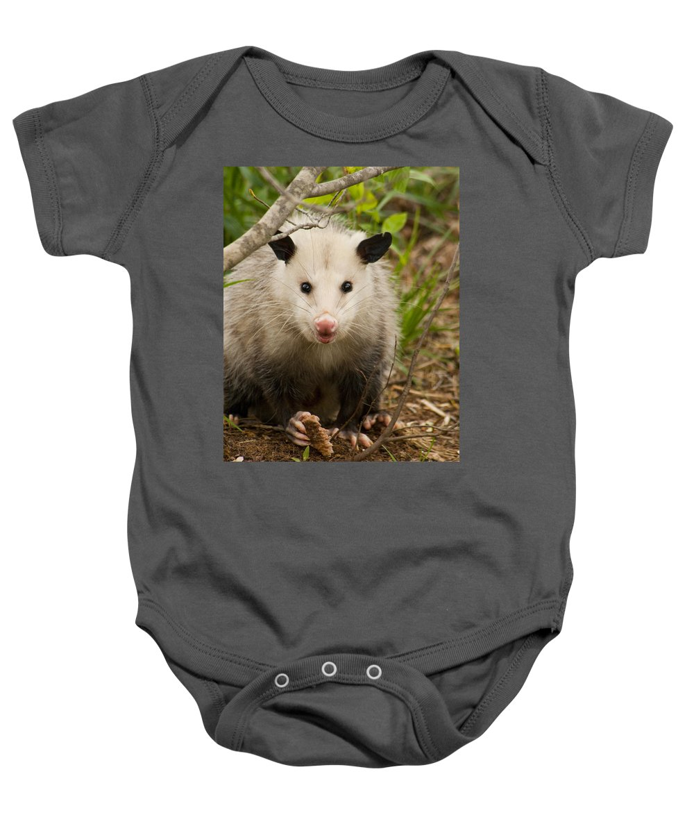 Didelphimorphia Baby Onesie featuring the photograph Don't Mess With Me Opossum by Kathy Clark