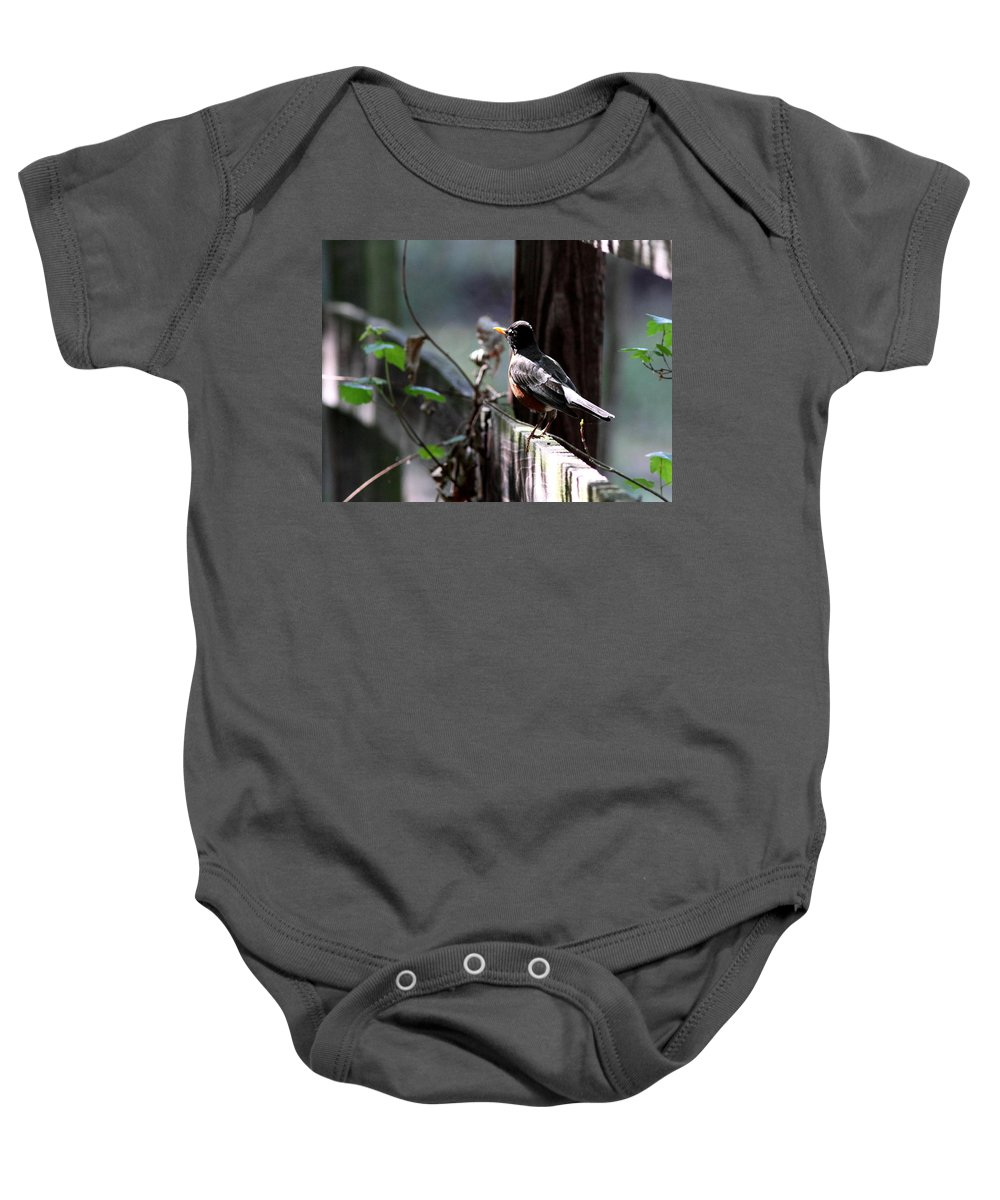 Baby Onesie featuring the photograph Down The Lane by Travis Truelove