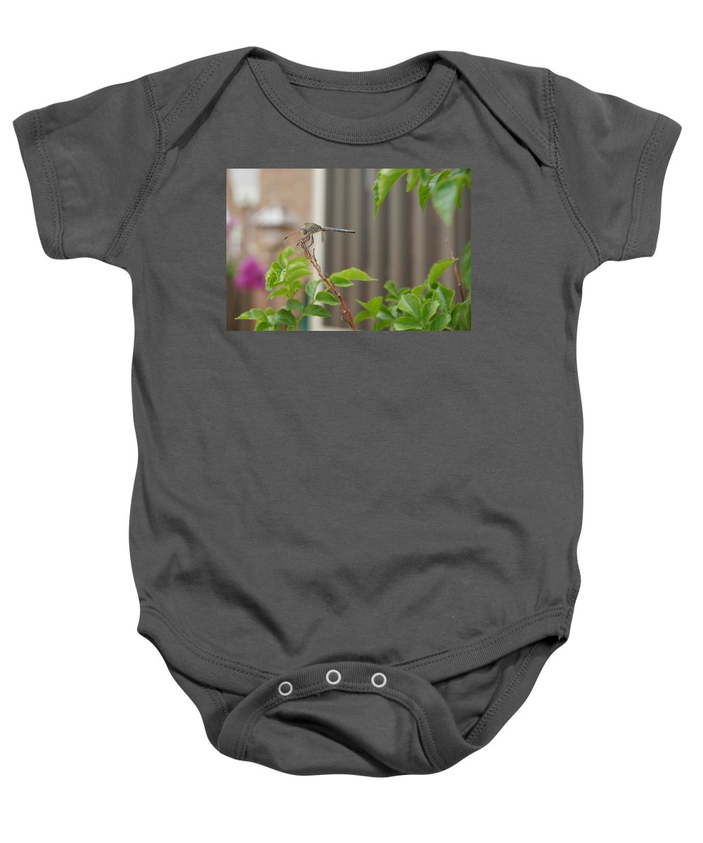Dragonfly Baby Onesie featuring the photograph Dragonfly In Nature by Megan Cohen