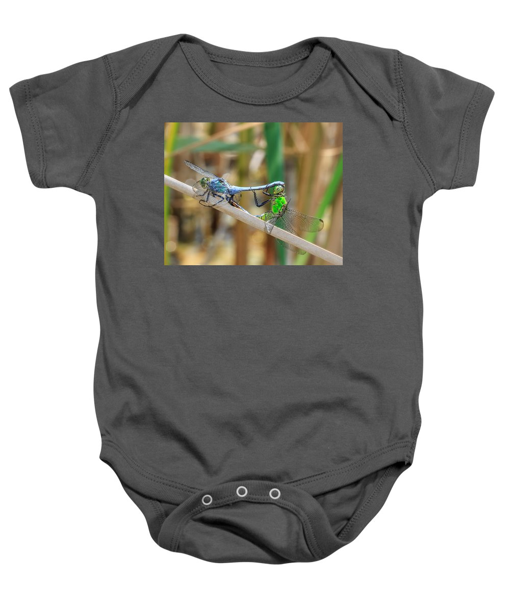 Dragonfly Baby Onesie featuring the photograph Dragonfly Love by Everet Regal