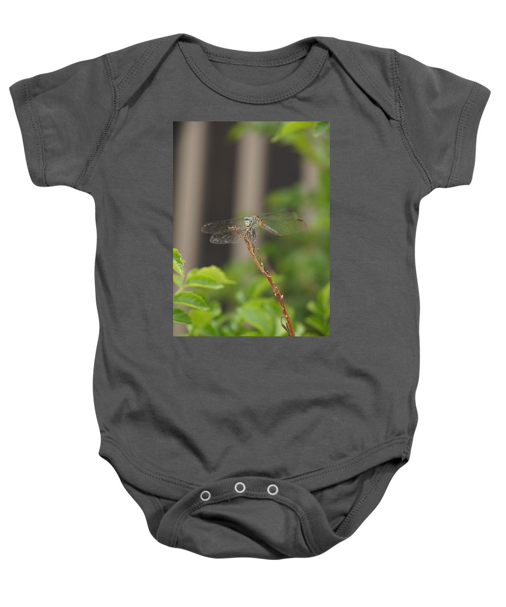 Dragonfly Baby Onesie featuring the photograph Dragonfly Smile by Megan Cohen