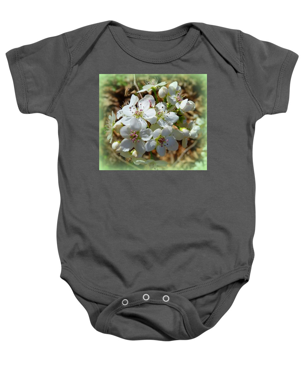 Flowers Baby Onesie featuring the photograph Dreams Of Pear Blossoms by Carla Parris