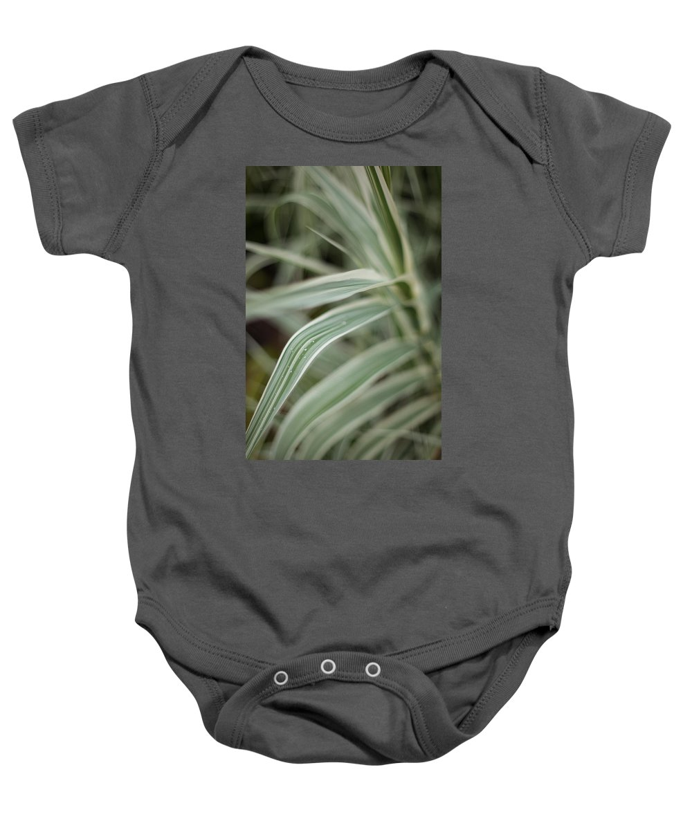 Grass Baby Onesie featuring the photograph Drops Of Grass Symmetry by Mike Reid