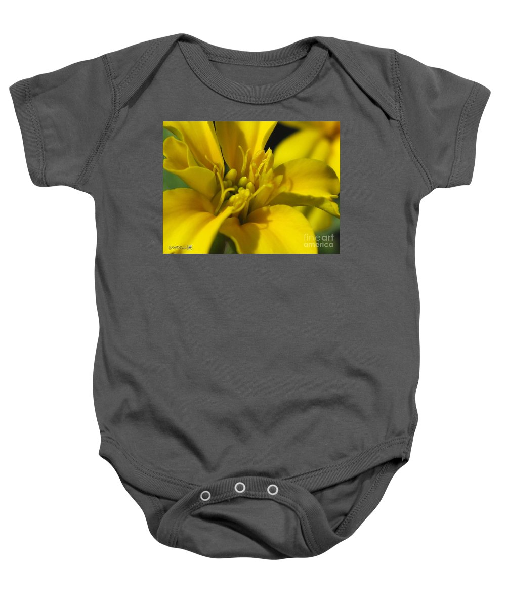 Dwarf Baby Onesie featuring the photograph Dwarf French Marigold In Disco Yellow by J McCombie