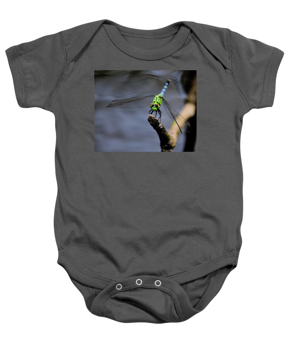 Eastern Baby Onesie featuring the photograph Eastern Pondhawk by Bill Dodsworth