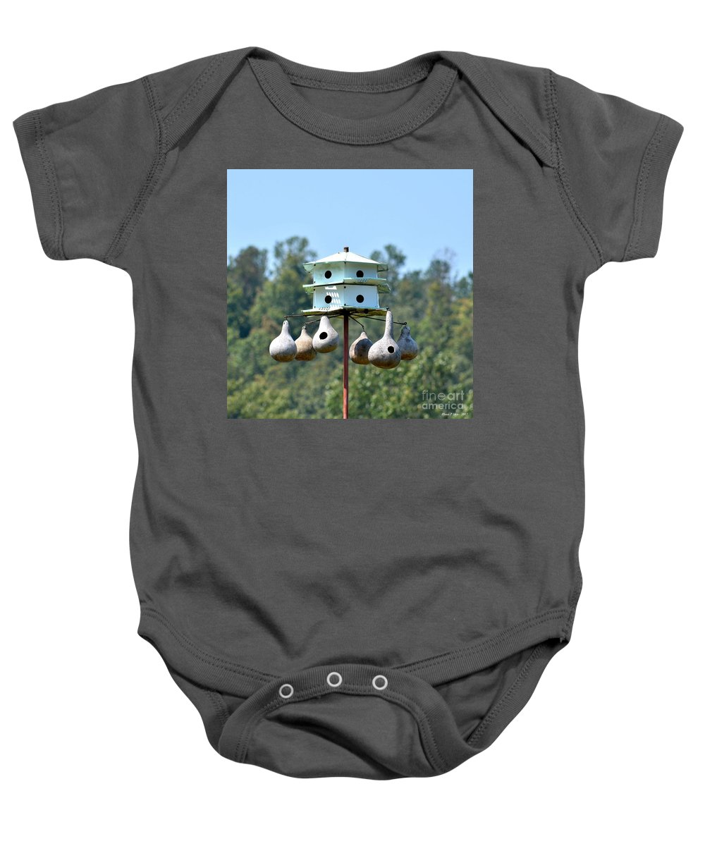Empty Nests Baby Onesie featuring the photograph Empty Nests by Maria Urso