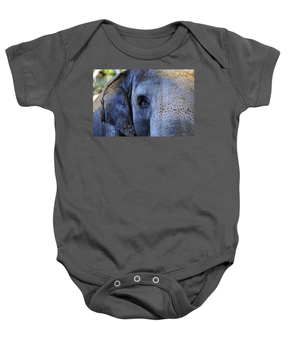 Fine Art Photography Baby Onesie featuring the photograph Eye Of The Elephant by David Lee Thompson