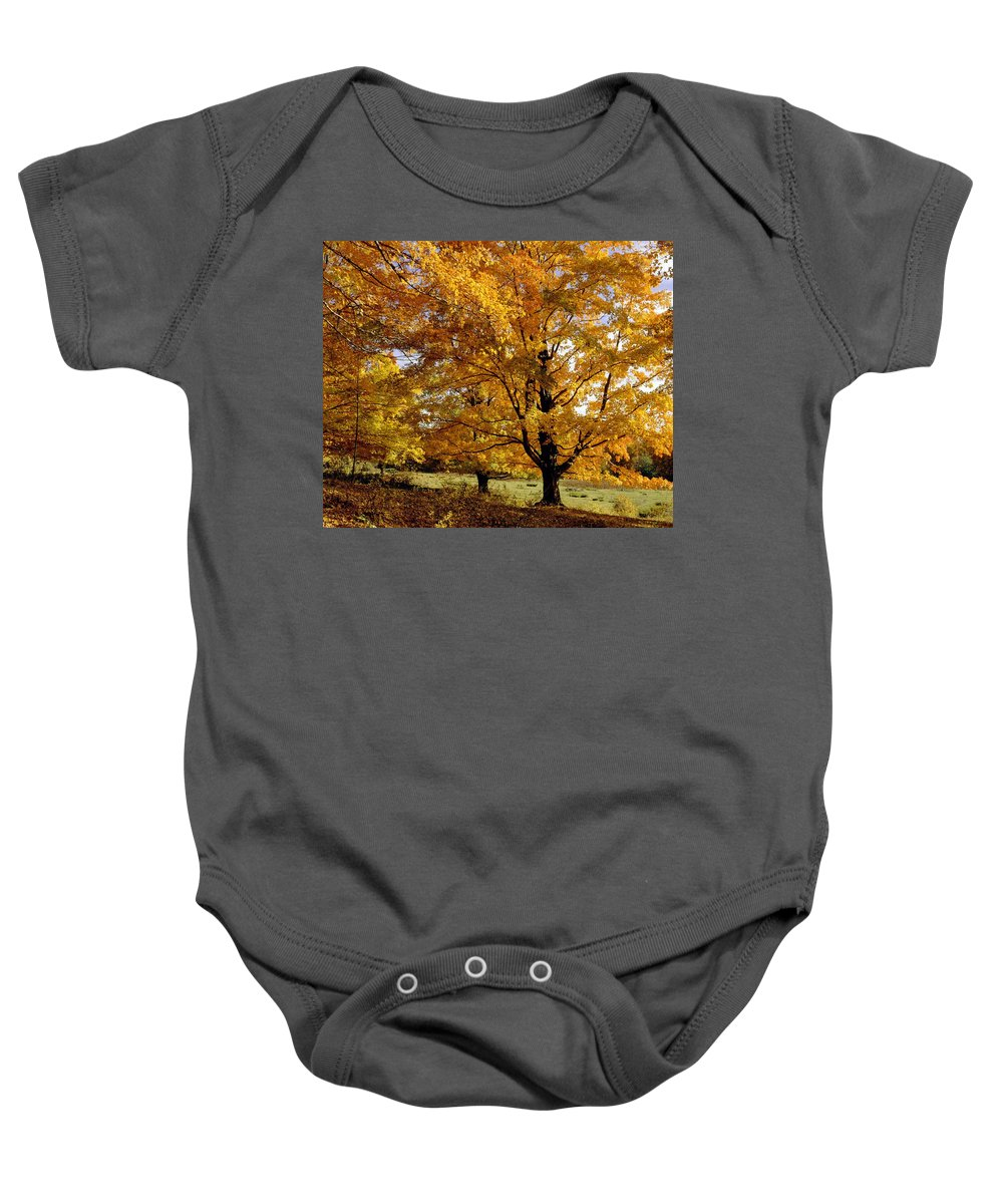 Canada Baby Onesie featuring the photograph Fall Colours In Eastern Townships by David Chapman