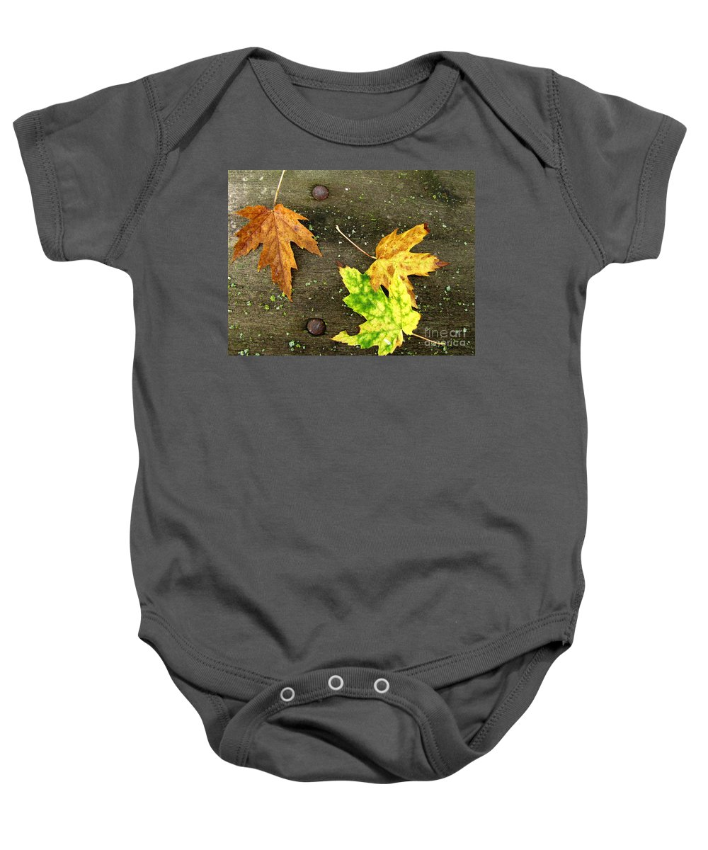 Fall Leaves Baby Onesie featuring the photograph Fall Trio by Marilyn Smith