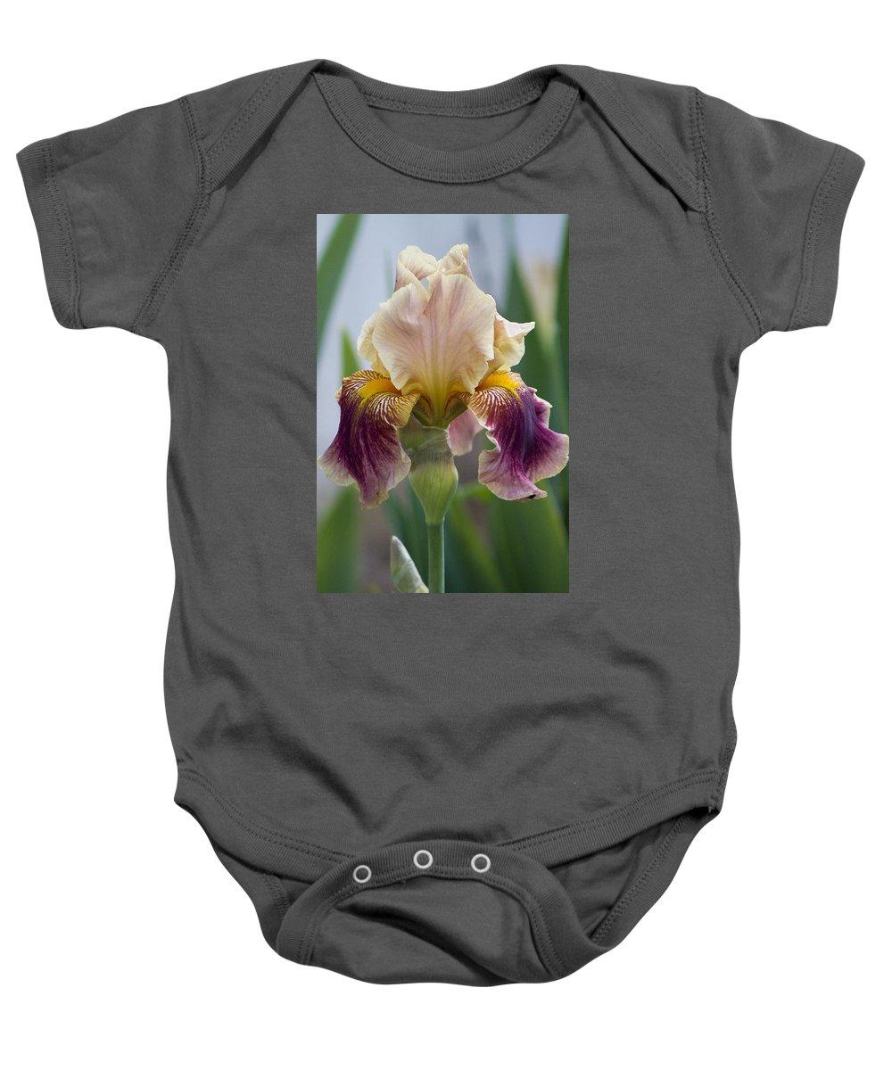 Iris Baby Onesie featuring the photograph Fancy Iris Dance Ruffles by Kathy Clark