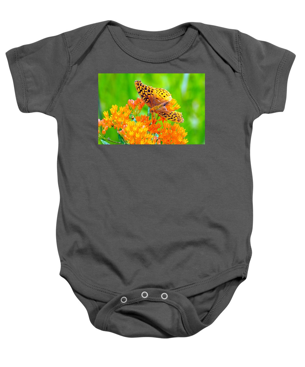 Butterfly Baby Onesie featuring the photograph Feeding Butterfly by Paul Ward