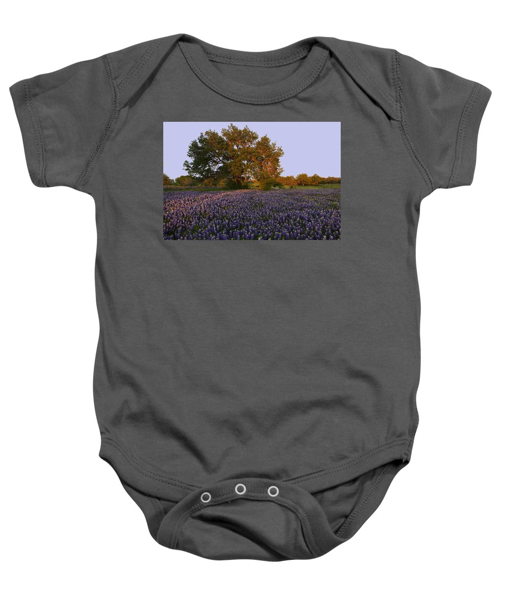 Baby Onesie featuring the photograph Field Of Blue by Susan Rovira