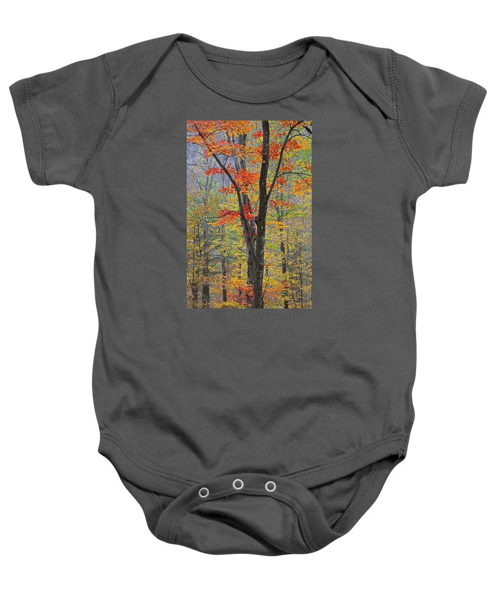 Fall Baby Onesie featuring the photograph Flaming Fall Foliage by John Stephens