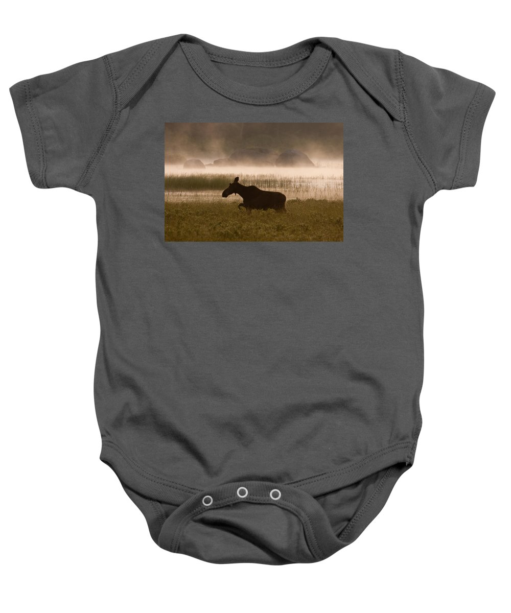Moose Baby Onesie featuring the photograph Foggy Stroll by Brent L Ander