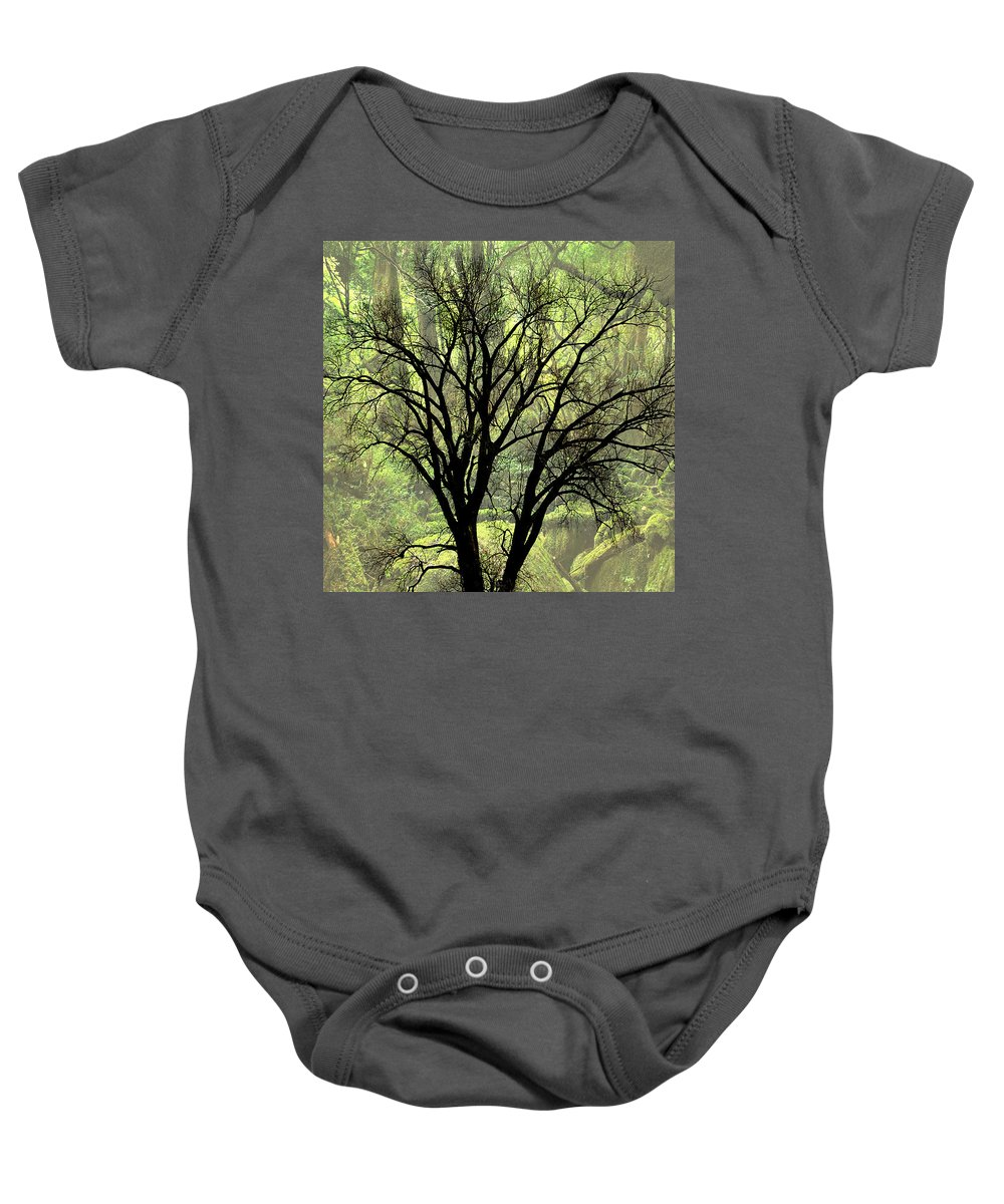 Tree Baby Onesie featuring the photograph Freaky Tree 2 by Marty Koch