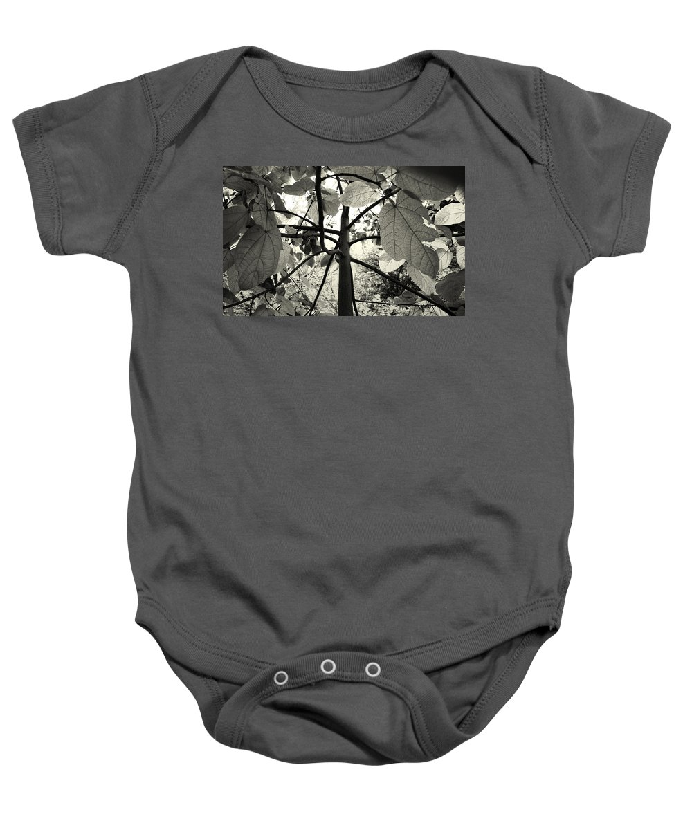 Flowers Baby Onesie featuring the photograph From The Inside by Sumit Mehndiratta