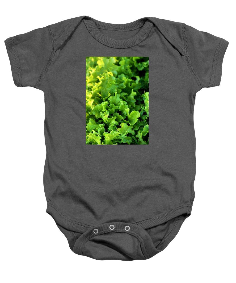 Garden Baby Onesie featuring the photograph Garden Fresh Salad Bowl Lettuce by Angela Rath