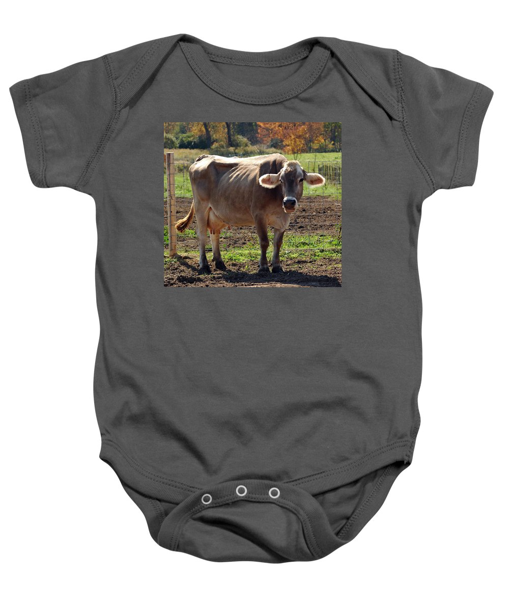 United_states Baby Onesie featuring the photograph Gasping Cow by LeeAnn McLaneGoetz McLaneGoetzStudioLLCcom