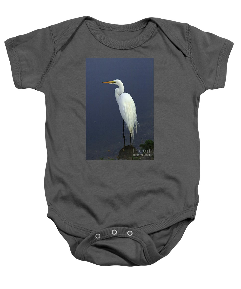Majestic Great Egret Baby Onesie featuring the photograph Great Egret 2 by Bob Christopher