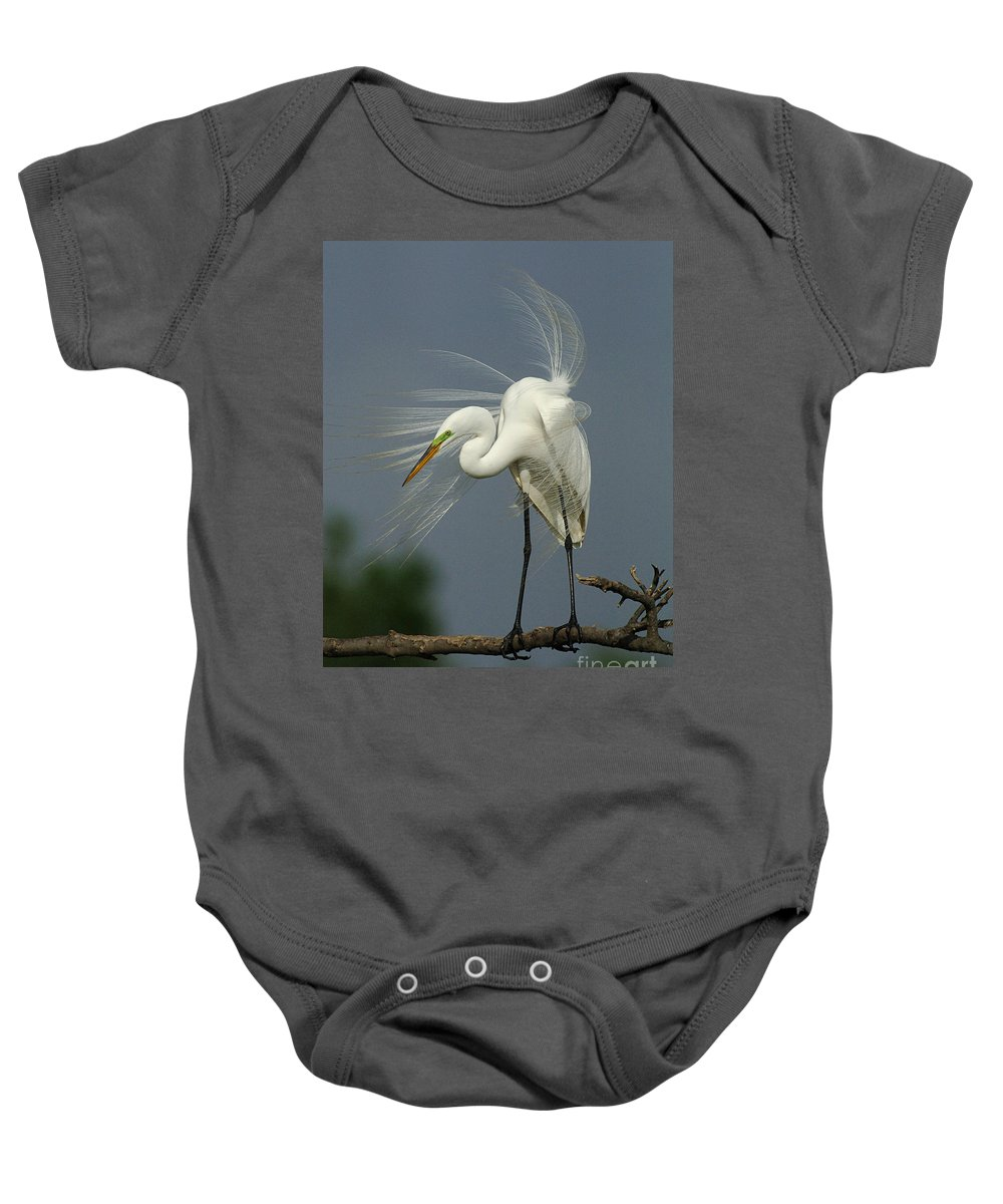 Great Egret Baby Onesie featuring the photograph Great Egret by Bob Christopher