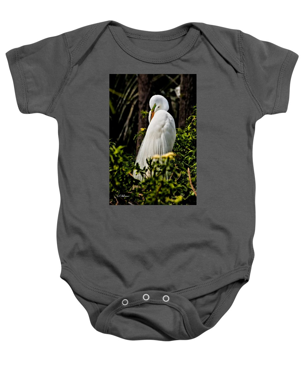 Avian Baby Onesie featuring the photograph Great Egret by Christopher Holmes