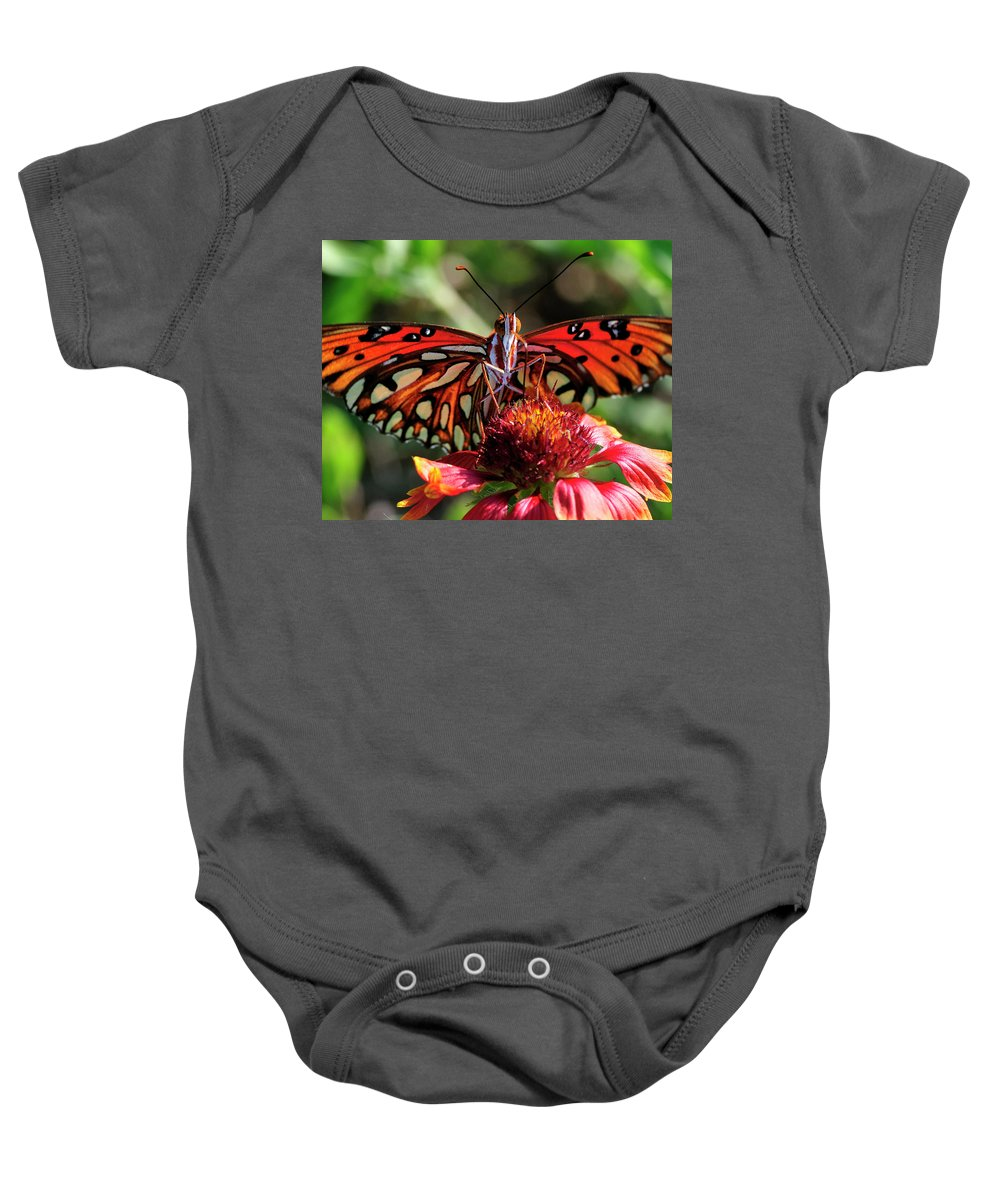 Gulf Fritillary Baby Onesie featuring the photograph Gulf Fritillary Butterfly by Bill Dodsworth