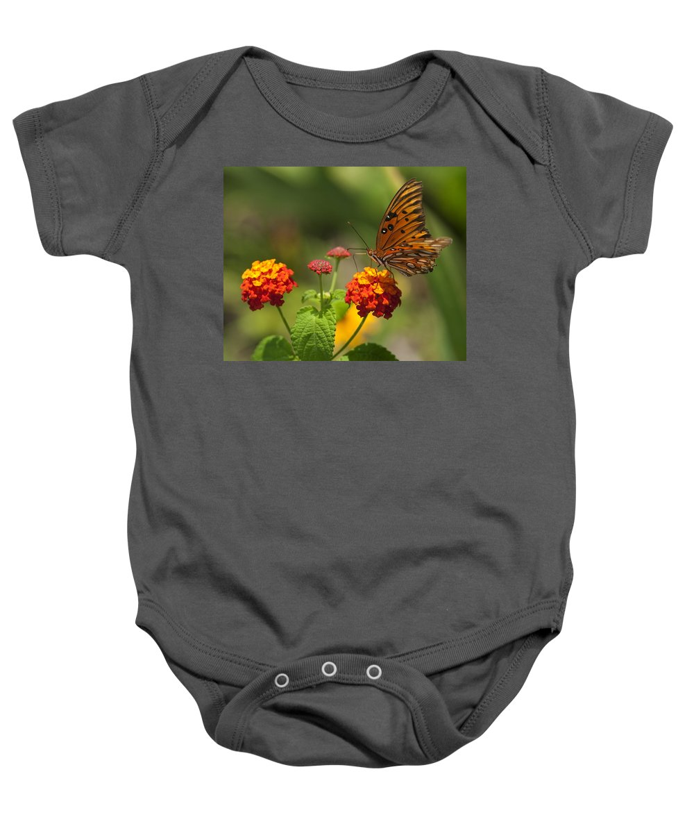 Gulf Fritillary Baby Onesie featuring the photograph Gulf Fritillary Butterfly On Colorful Lantana by Kathy Clark