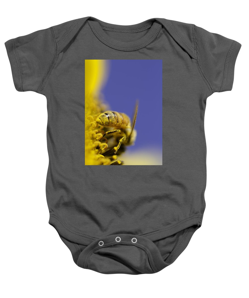 Bee Baby Onesie featuring the photograph Hard Worker by Danielle Silveira