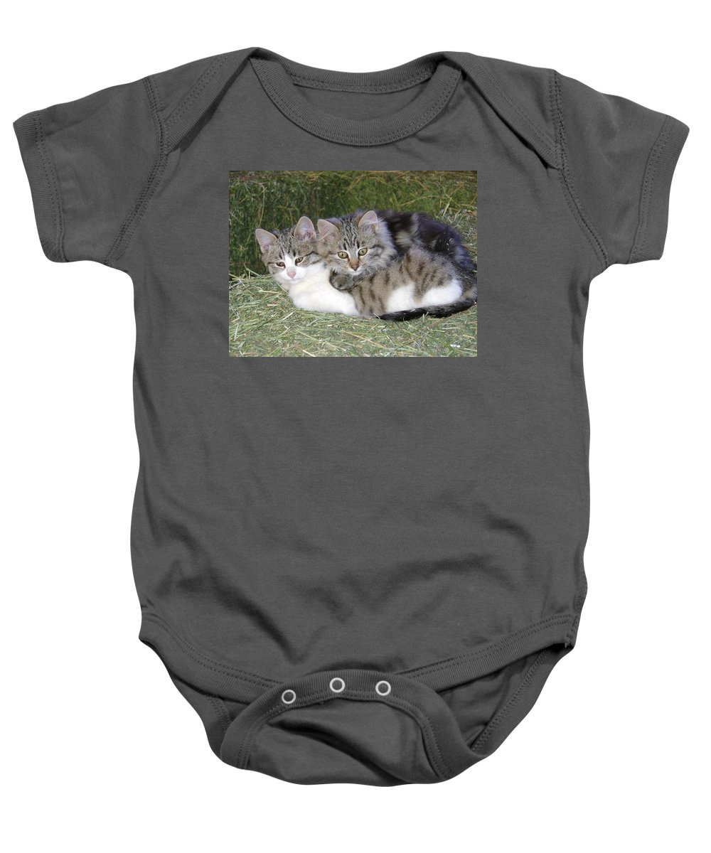 Cat Baby Onesie featuring the photograph Haystack Buddies by Charles and Melisa Morrison