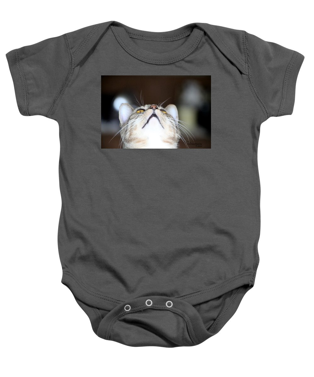 Cat Baby Onesie featuring the photograph Henry by Ericamaxine Price