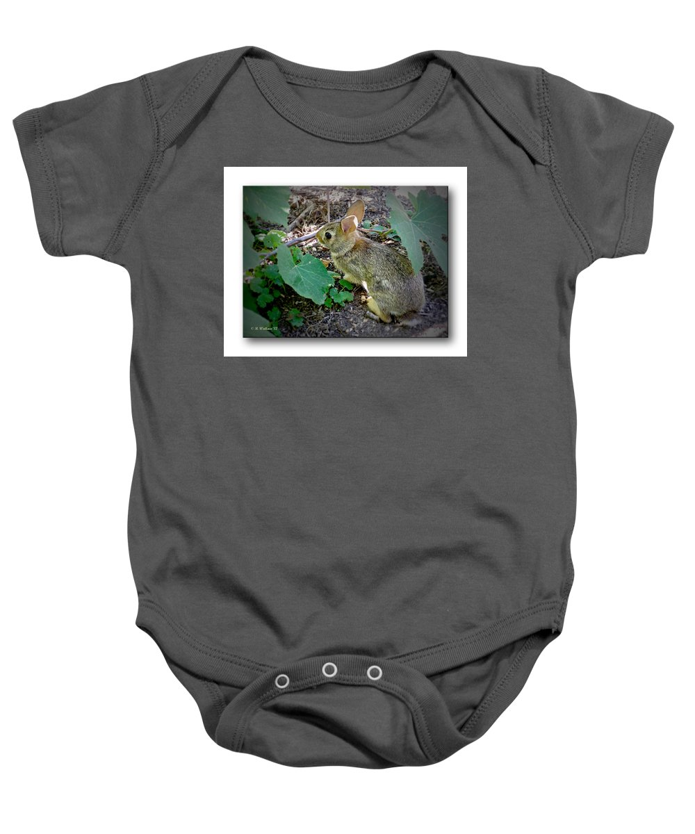 2d Baby Onesie featuring the photograph Hiding In The Shadows by Brian Wallace