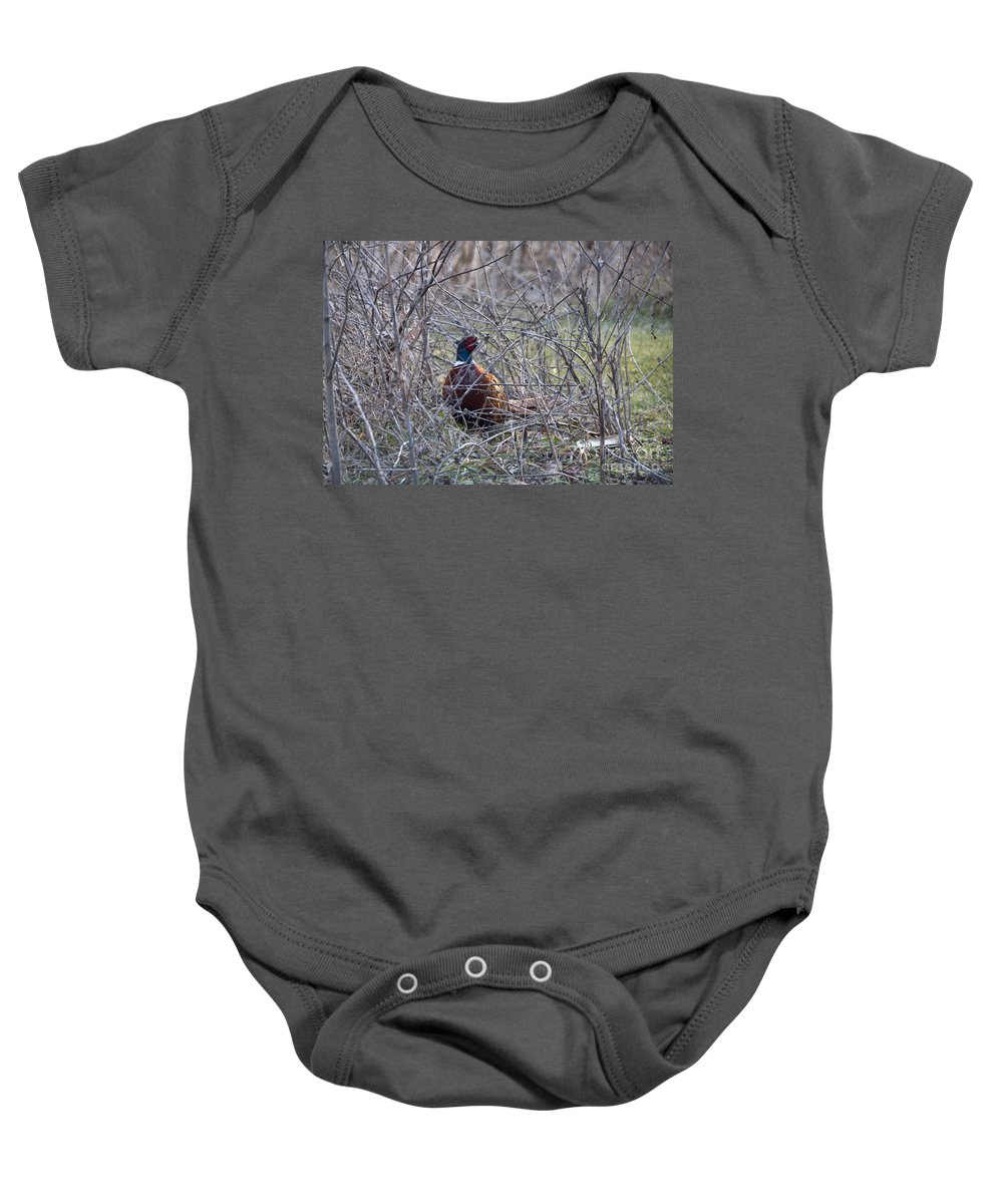 Bird Baby Onesie featuring the photograph Hiding Pheasant by David Arment