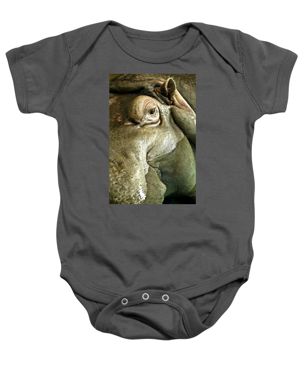 Animals Baby Onesie featuring the photograph Hippo by Con Tanasiuk