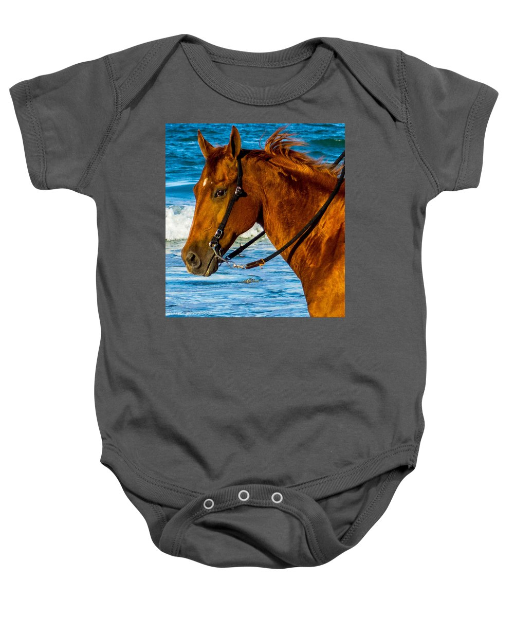 Horse Baby Onesie featuring the photograph Horse Portrait by Shannon Harrington