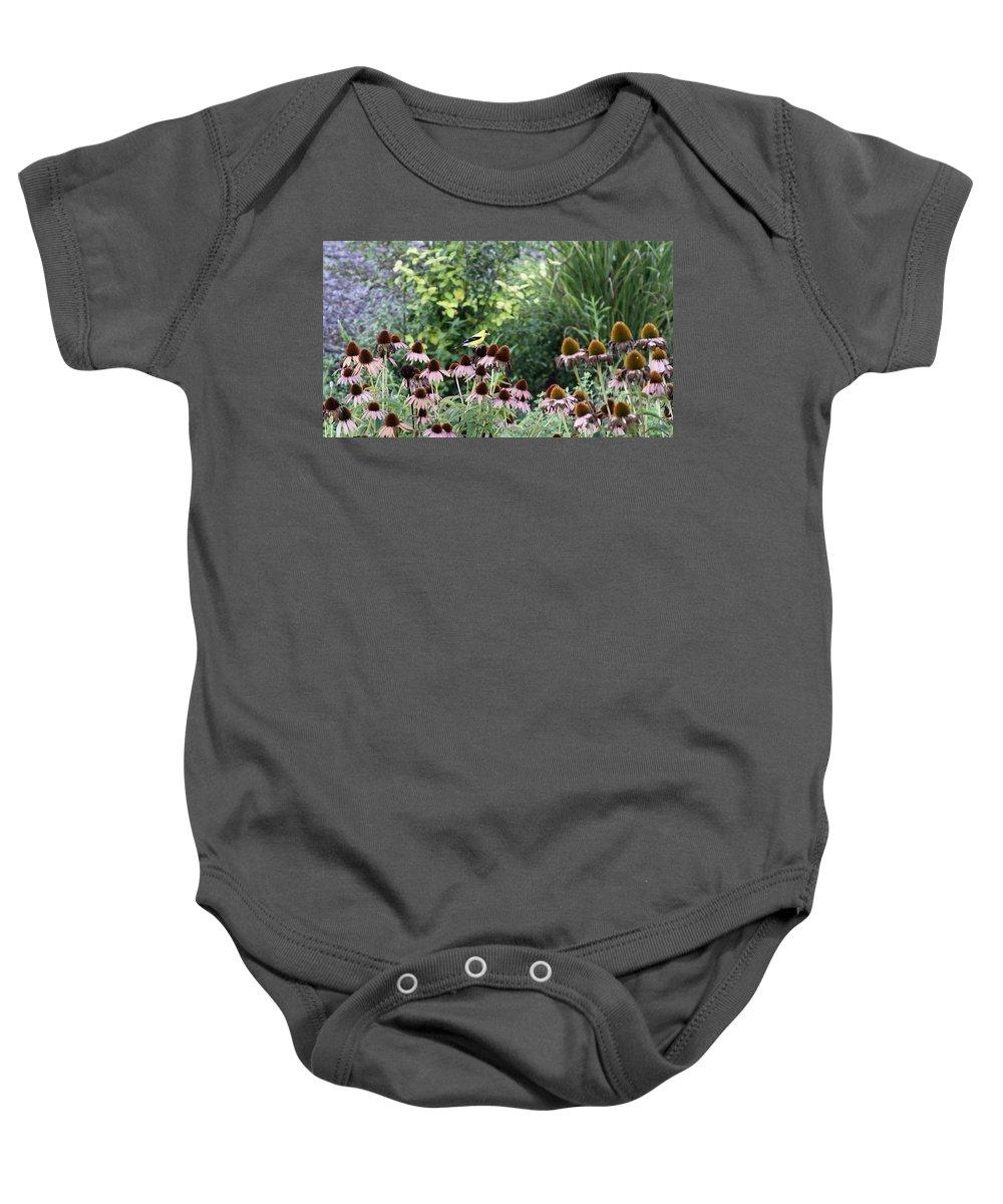 Goldfinch Baby Onesie featuring the photograph In The Garden by Travis Truelove
