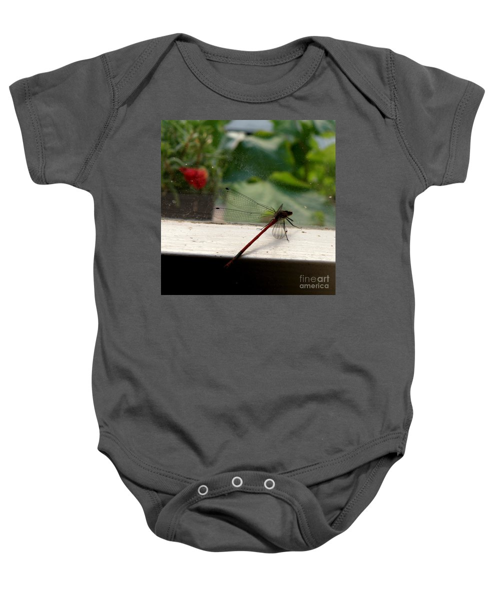 Dragonfly Baby Onesie featuring the photograph It's Always Greener by Lainie Wrightson