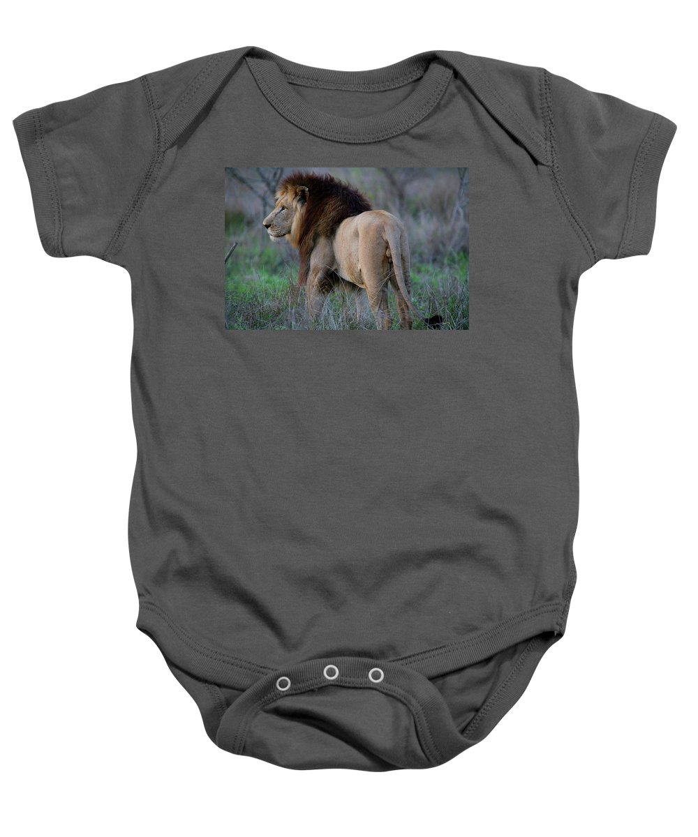 Lion Baby Onesie featuring the photograph King Of The Beasts by Bruce J Robinson