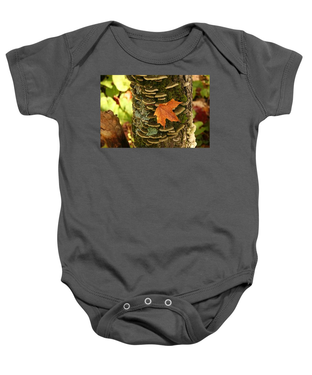 Baby Onesie featuring the photograph Leaf by Joi Electa