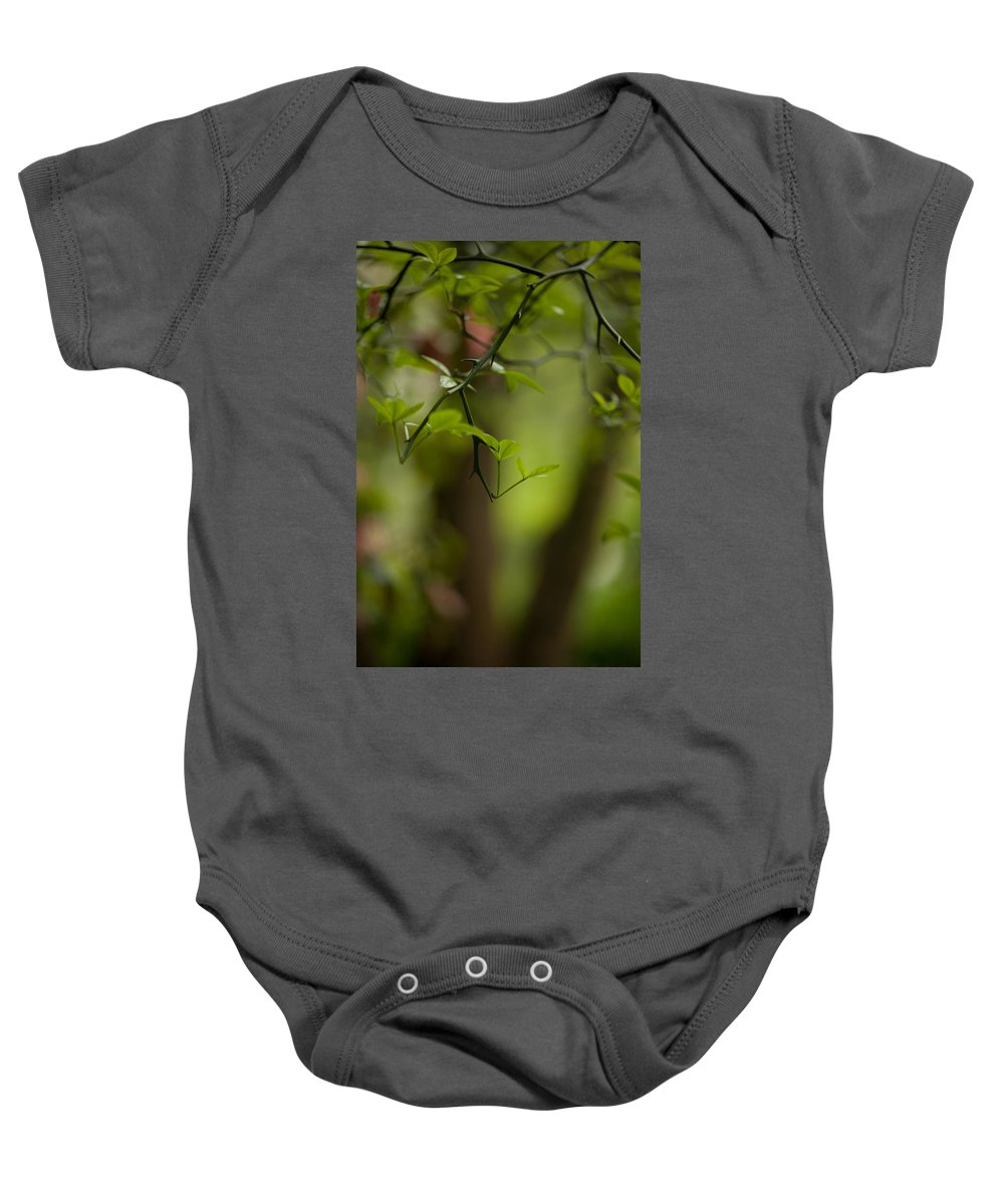Tree Baby Onesie featuring the photograph Leaves And Thorns by Mike Reid