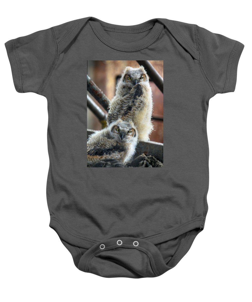 Bird Baby Onesie featuring the photograph Life After People by Lori Deiter