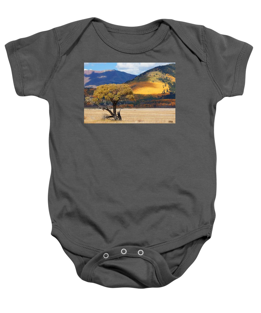 Aspen Baby Onesie featuring the photograph Lone Tree by Jim Garrison