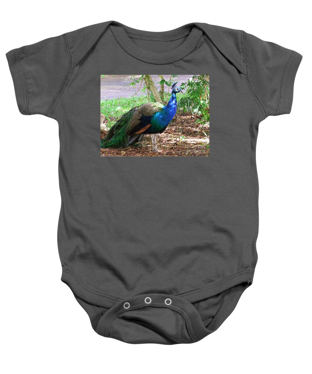 Peacock Baby Onesie featuring the photograph Looking For A Mate by Mary Deal
