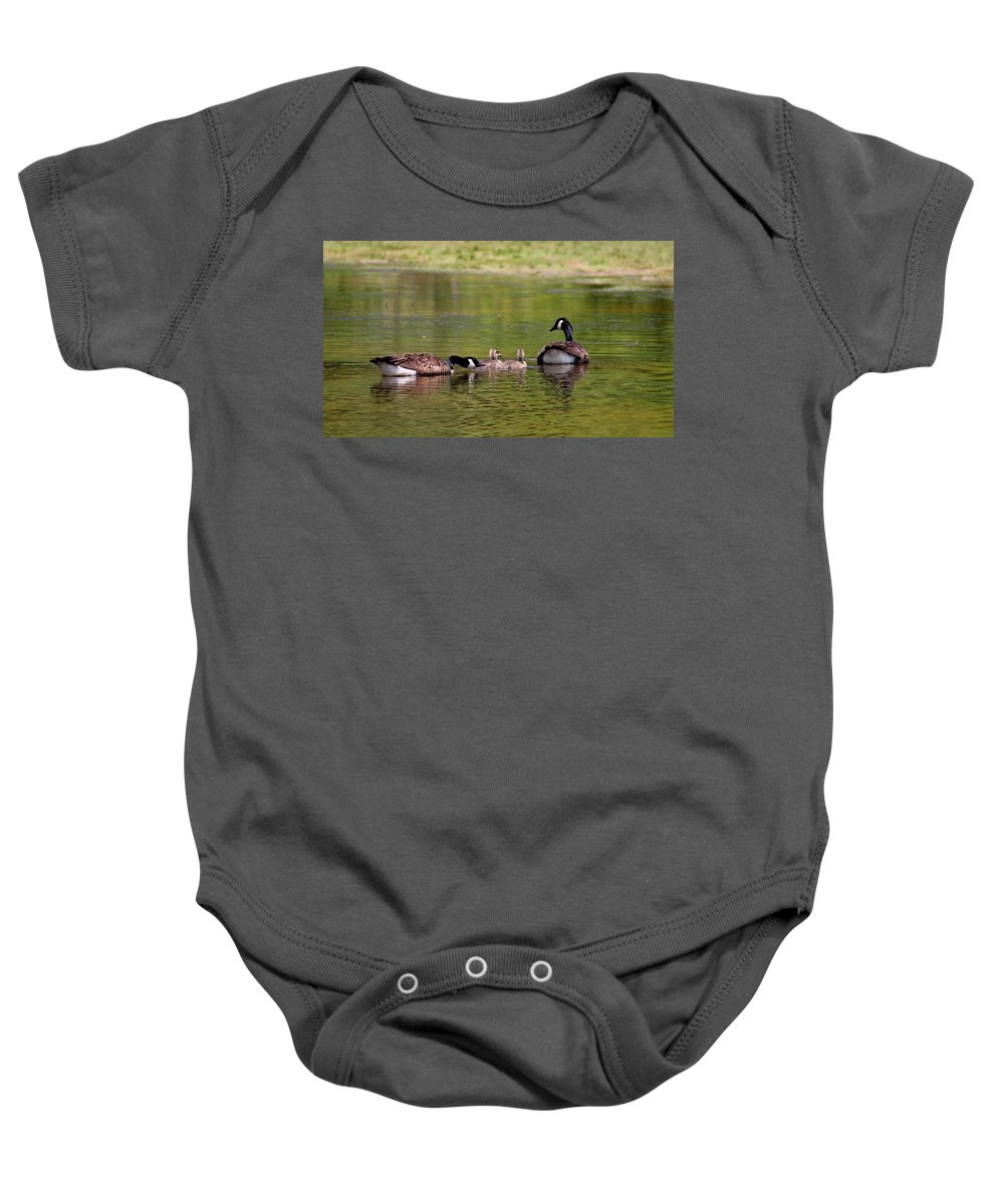 Canada Goose Baby Onesie featuring the photograph Loving Parents by Travis Truelove