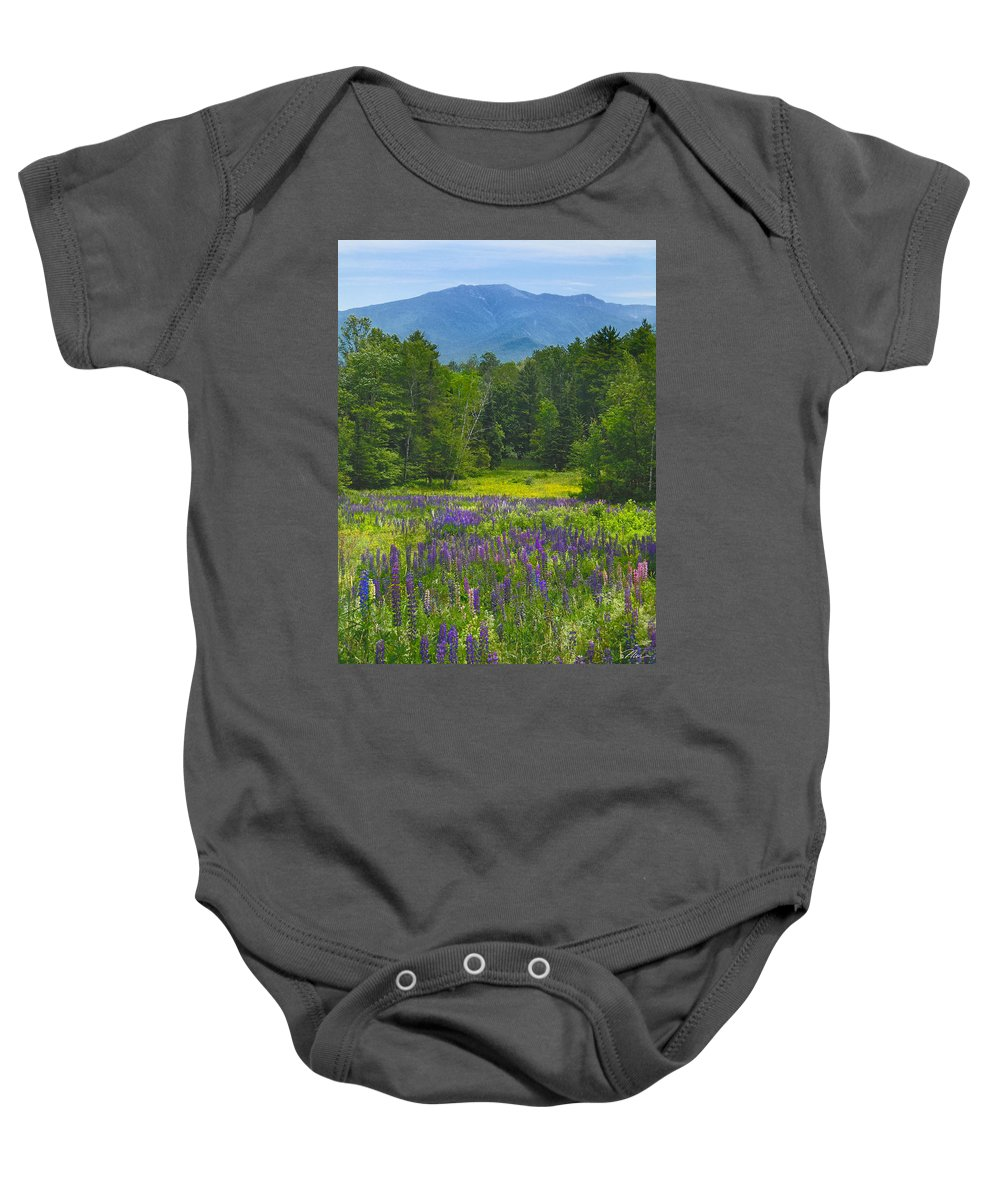 Lupine Baby Onesie featuring the photograph Lupine In Sugar Hill New Hampshire by Nancy Griswold