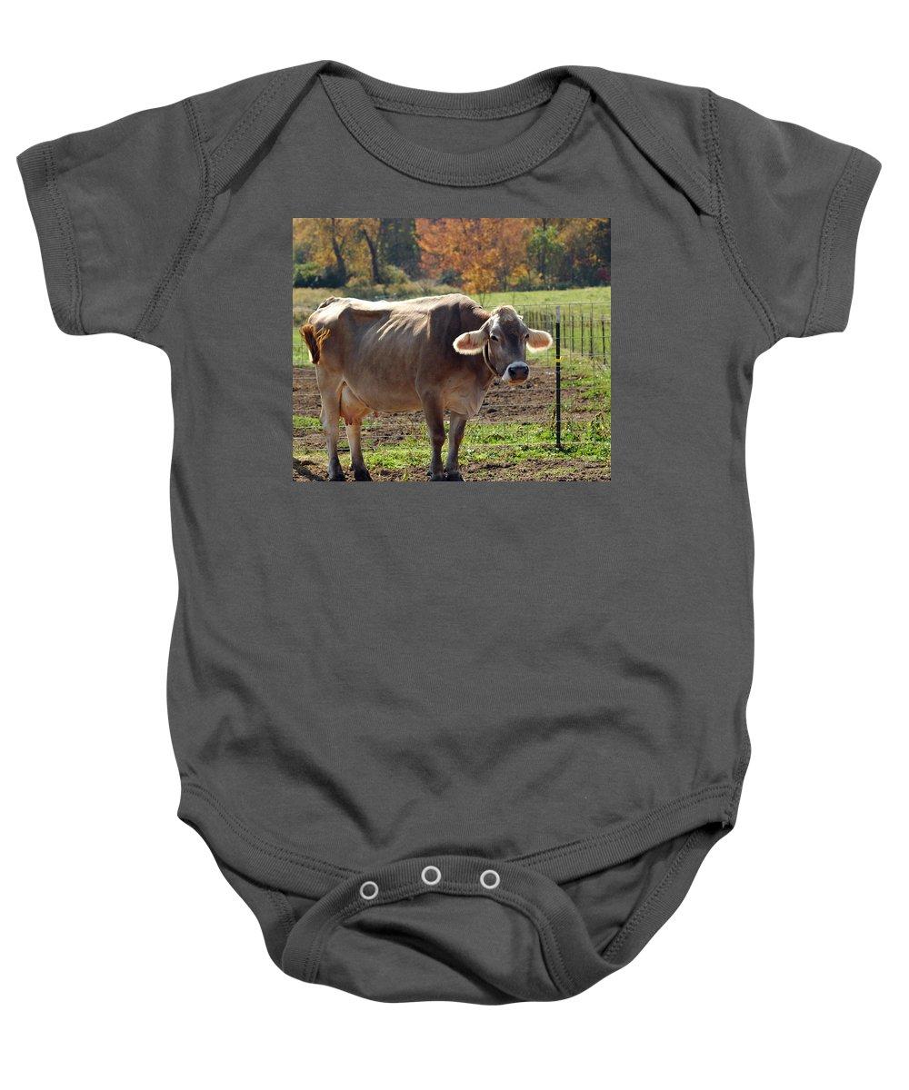 Animals Baby Onesie featuring the photograph Mad Cow Tail Swish by LeeAnn McLaneGoetz McLaneGoetzStudioLLCcom