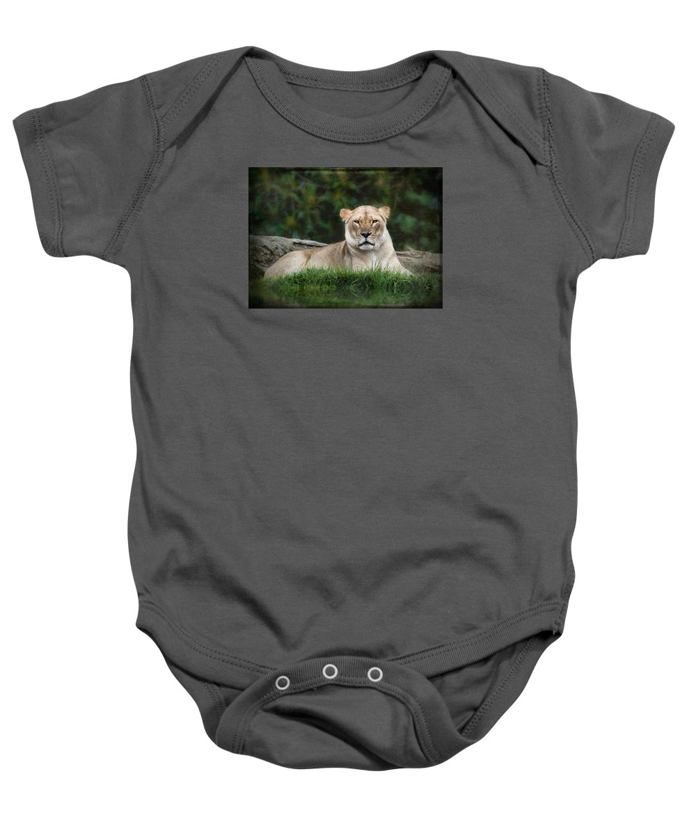 Lions Baby Onesie featuring the photograph Madam Has Attitude by Kym Clarke