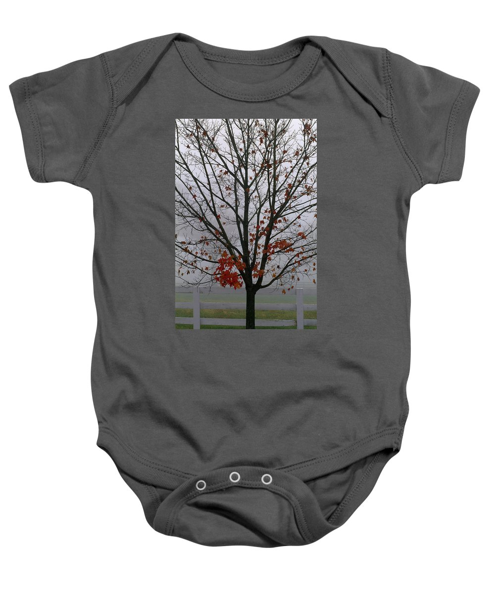 Scene Baby Onesie featuring the photograph Maple Tree In Autumn by Natural Selection Tony Sweet