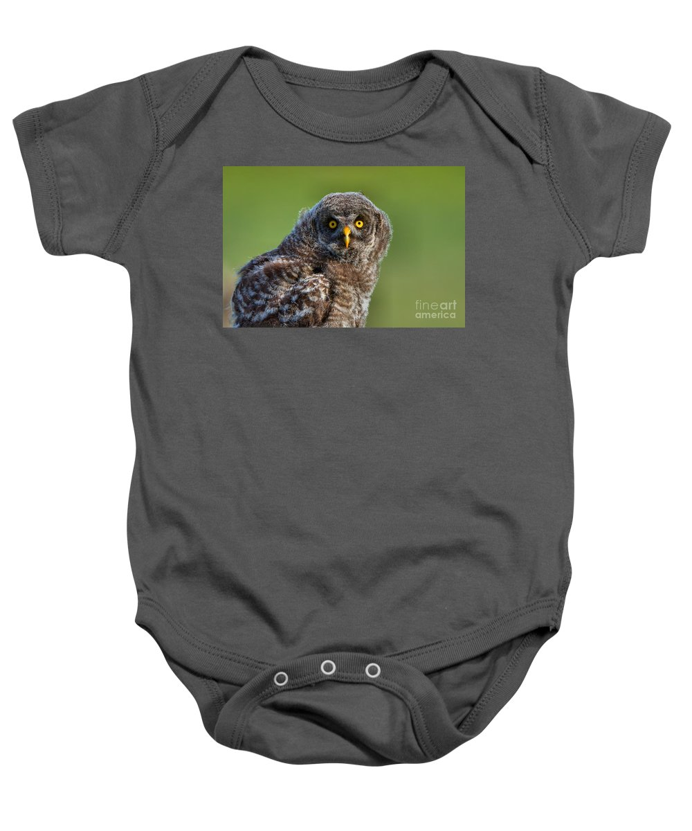 Alberta Baby Onesie featuring the photograph Mesmerized by James Anderson